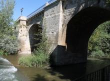 Río Carrión en su paso por Carrión de los Condes 2