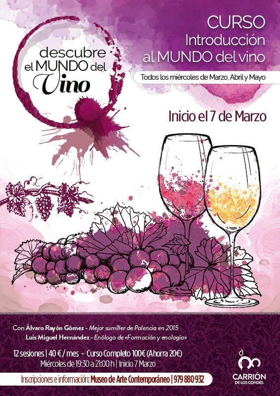 Descubre el Mundo del Vino