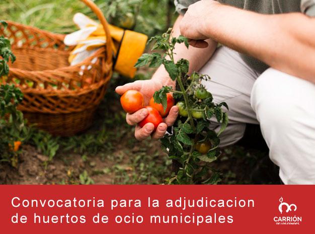 Convocatoria para la adjudicación de huertos de ocio municipales 2021